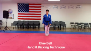 Blue Belt Hand & Kicking Technique Video